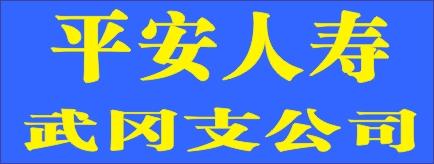 平安人寿武冈支公司-武冈招聘